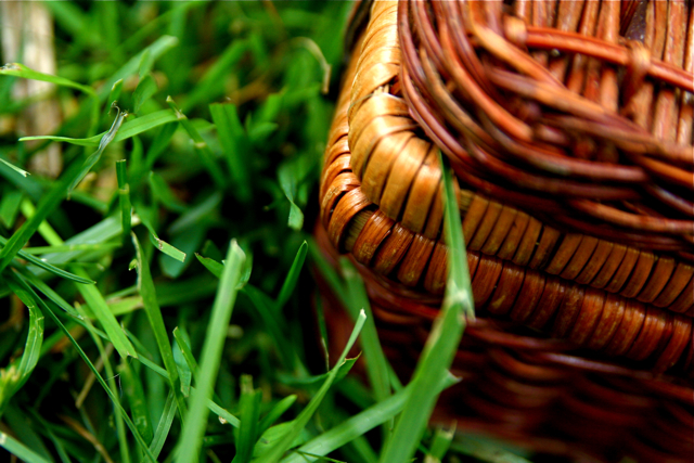 grass and basket