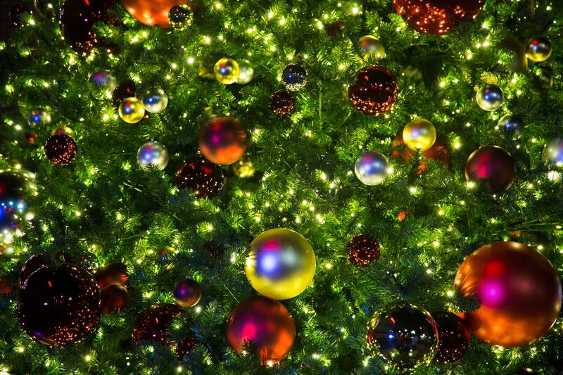 Cathedral Commons Brings New Light to Your Holidays