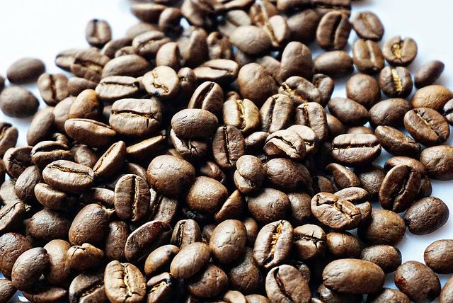FreshFarm Dupont Circle Market: From Organic Veggies to Small-Batch Coffee